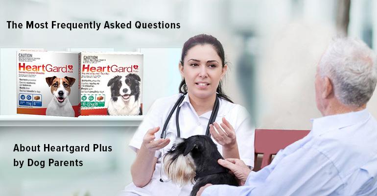 FAQ About HeartGard Plus