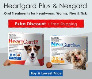 heartgard-nexgard-for-dogs