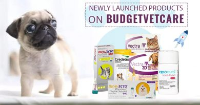 trending pet products | BudgetVetCare