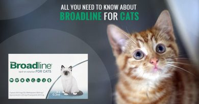 Broadline for Cats