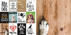 Maintaining a scrapbook for pets