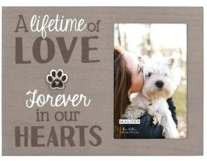 photo frame a picture of your pet