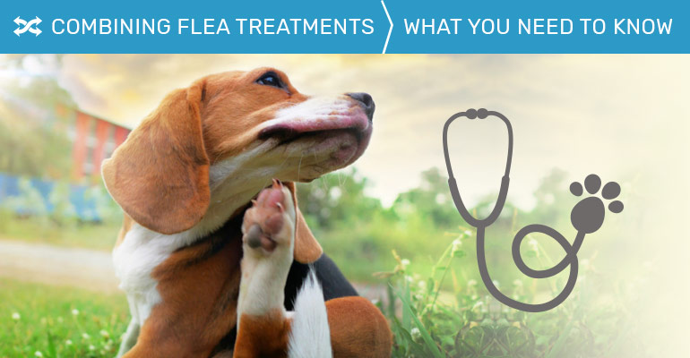 Combining Flea Treatments
