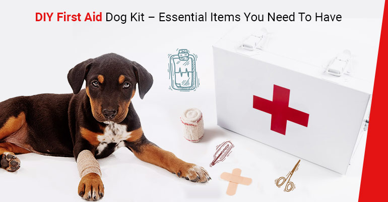 DIY-First Aid Dog Kit