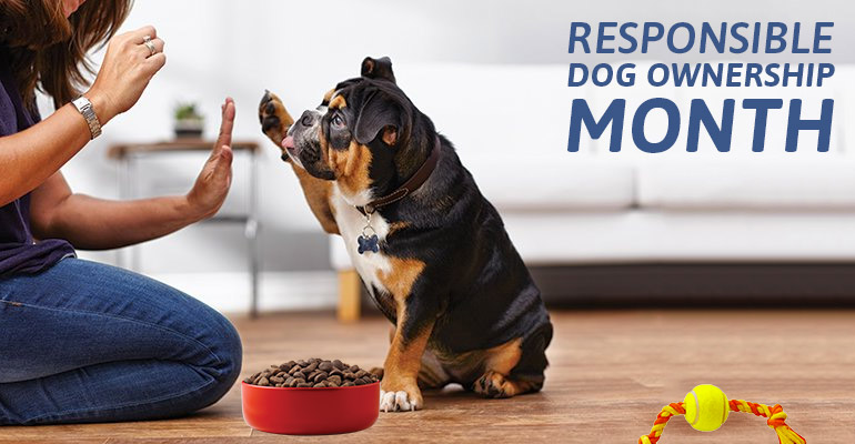 Responsible Dog Ownership Month
