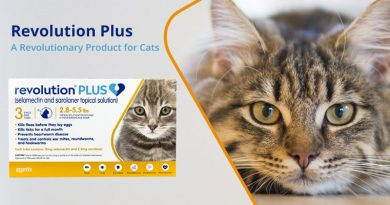 Revolution Plus: The Extra Plus to Revolution for cats