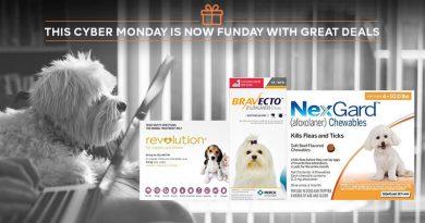 Cyber-Monday-pet-deals