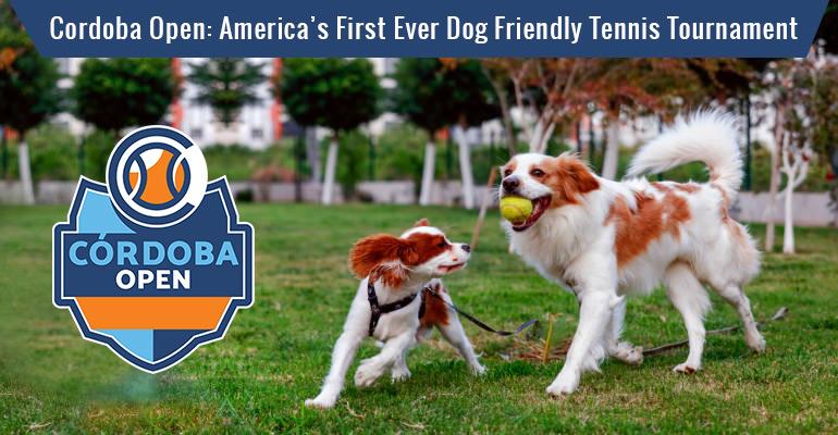America's First Ever Dog Friendly Tennis Tournament