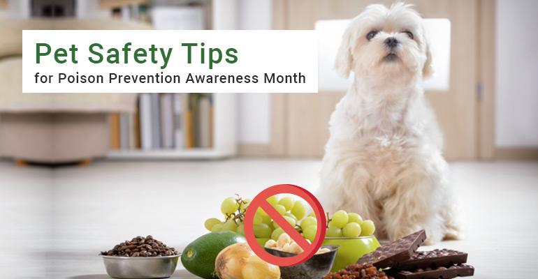 Poison Prevention Awareness Month