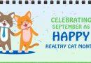 Happy Healthy Cat Month