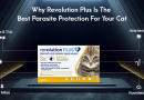 Why Revolution Plus Is The Best Parasite Protection For Your Cat
