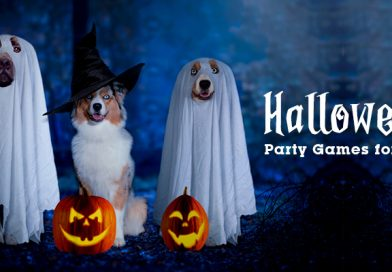 Halloween Party Games for Pets
